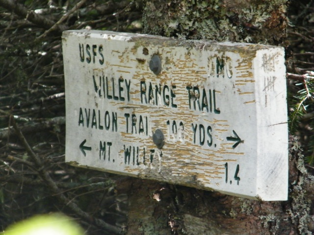 After a 2.8-mile climb to the top of Field, it's another 1.4 miles to Willey.